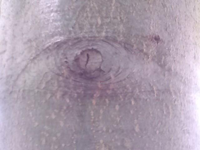 eyehieye