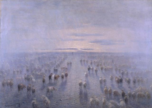 flockoffreedom