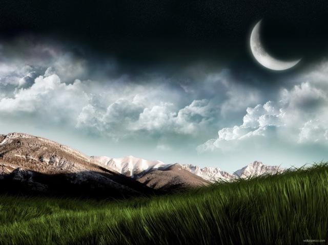 Grass-Moon