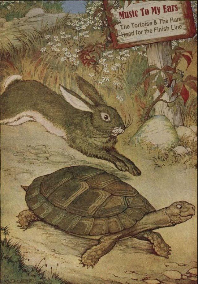 tortoisehare2
