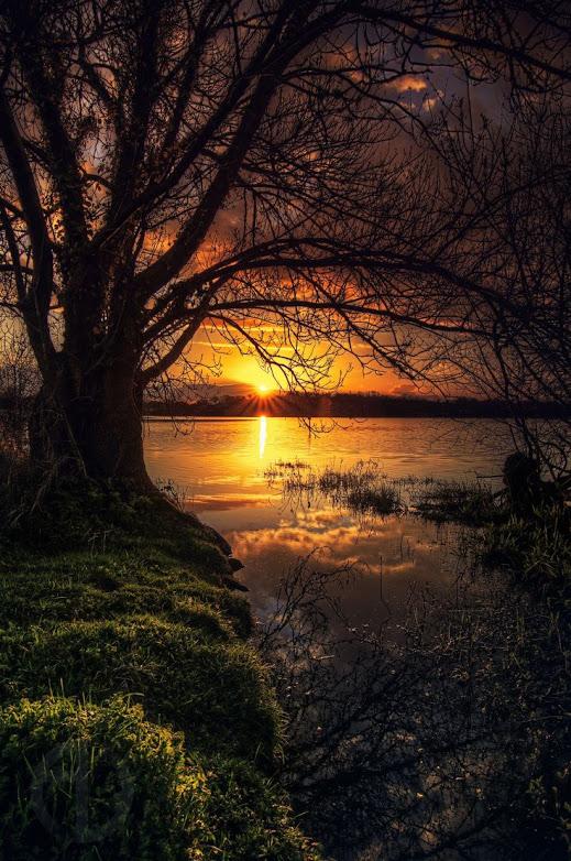 Lago Beaulieu, Coueron, Francia
