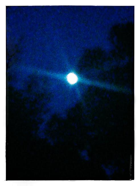 moonbeamz