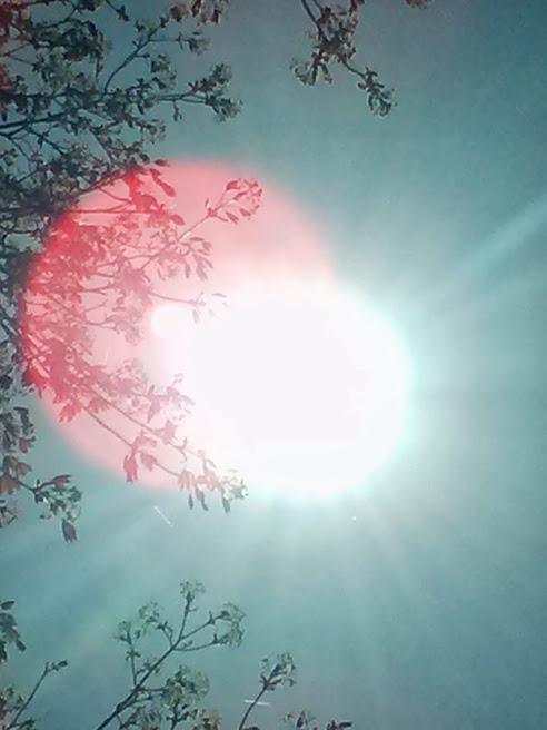 sunshalo