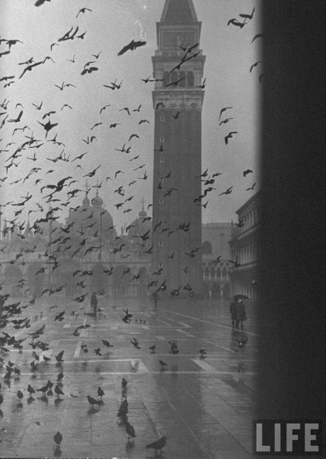 A Rainy Day in Venice, December 1952 (4)