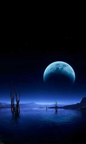 moon5776