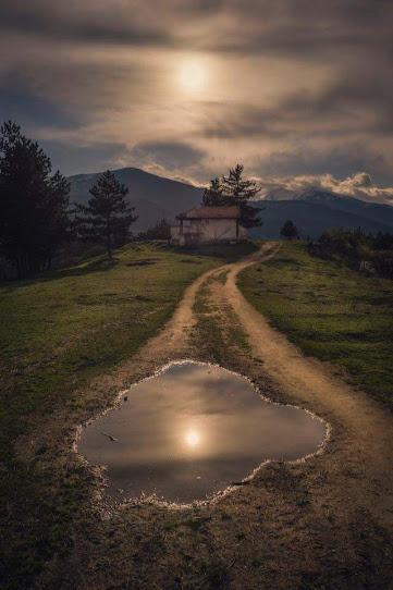 puddleonroad