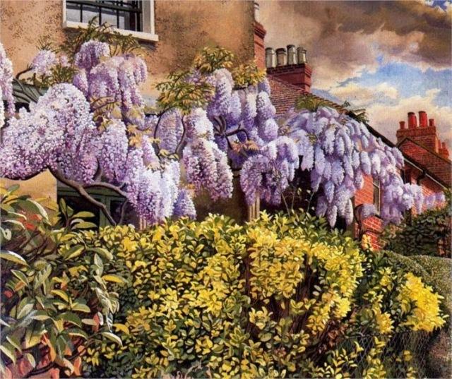 wisteria-cookham