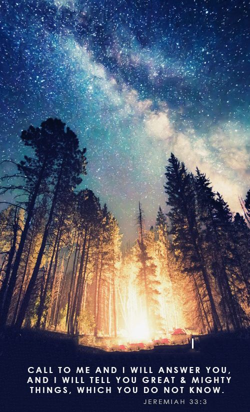 starry-nights-amazing-nature